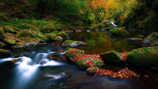 Scenic-River-Colors-Desktop-Wallpaper